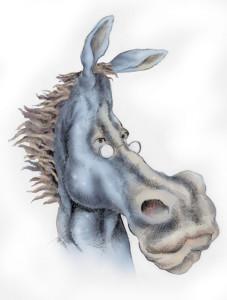 20080729 DEM donkey