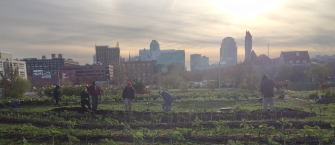 Urban Agriculture: Back to Basics