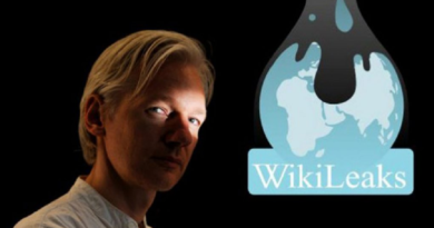 Wikileaks, an Illegitimate NGO